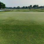 グリーンウッドゴルフ